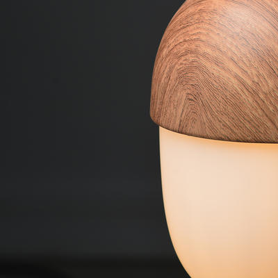 Závěsné svítidlo Acorn - 3 - 2